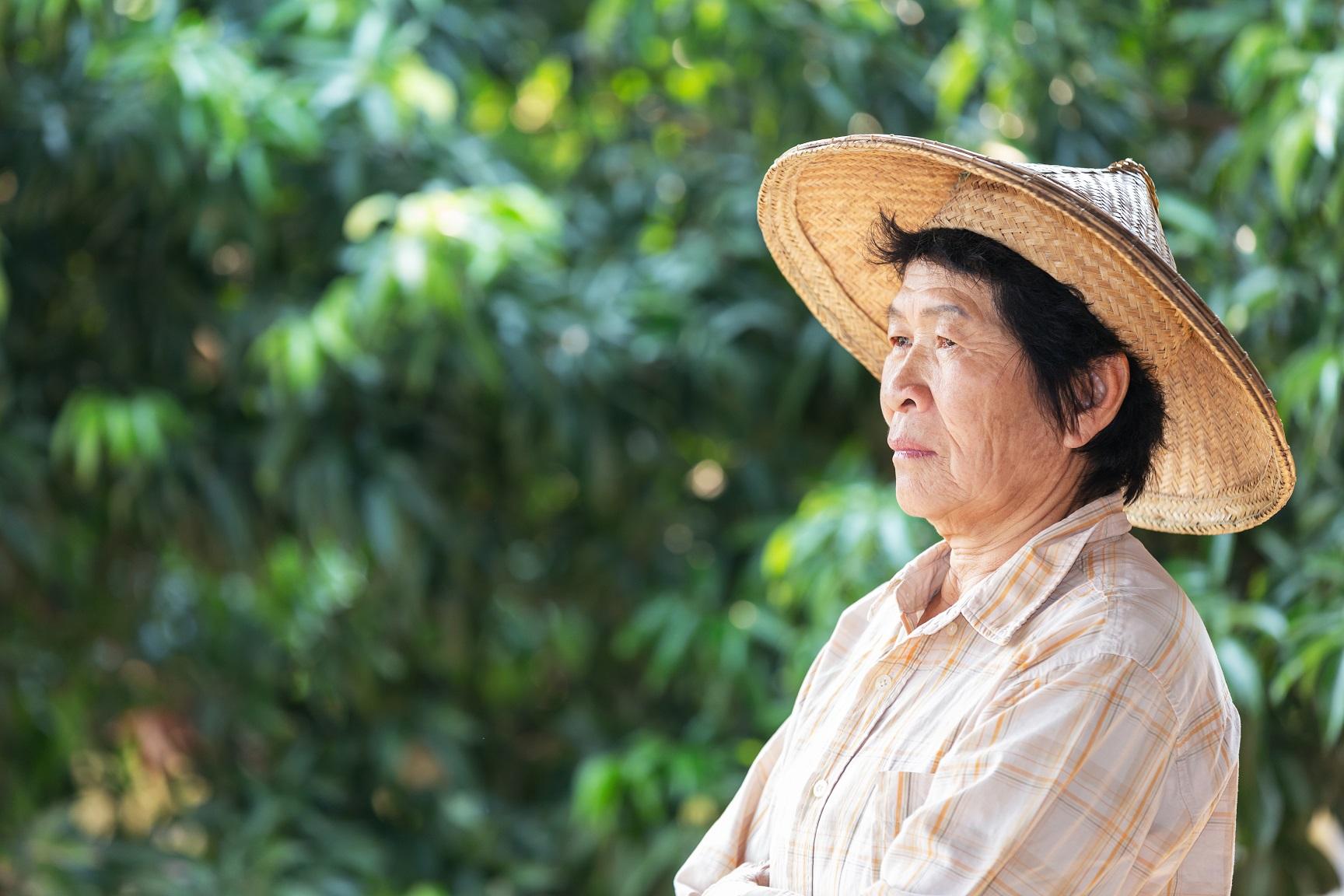 aposentadoria por idade mista